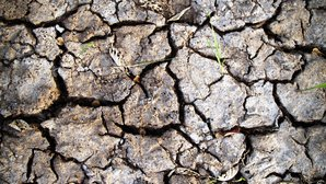 dry-soil-earth_1600.jpg