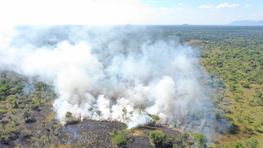 Savanna fire in Mozambique at a scale that would not be detected by conventional burned area that has been used for global-scale burned area mapping but is detected with the satellite data used in this study (photo-credit: Tom Eames)