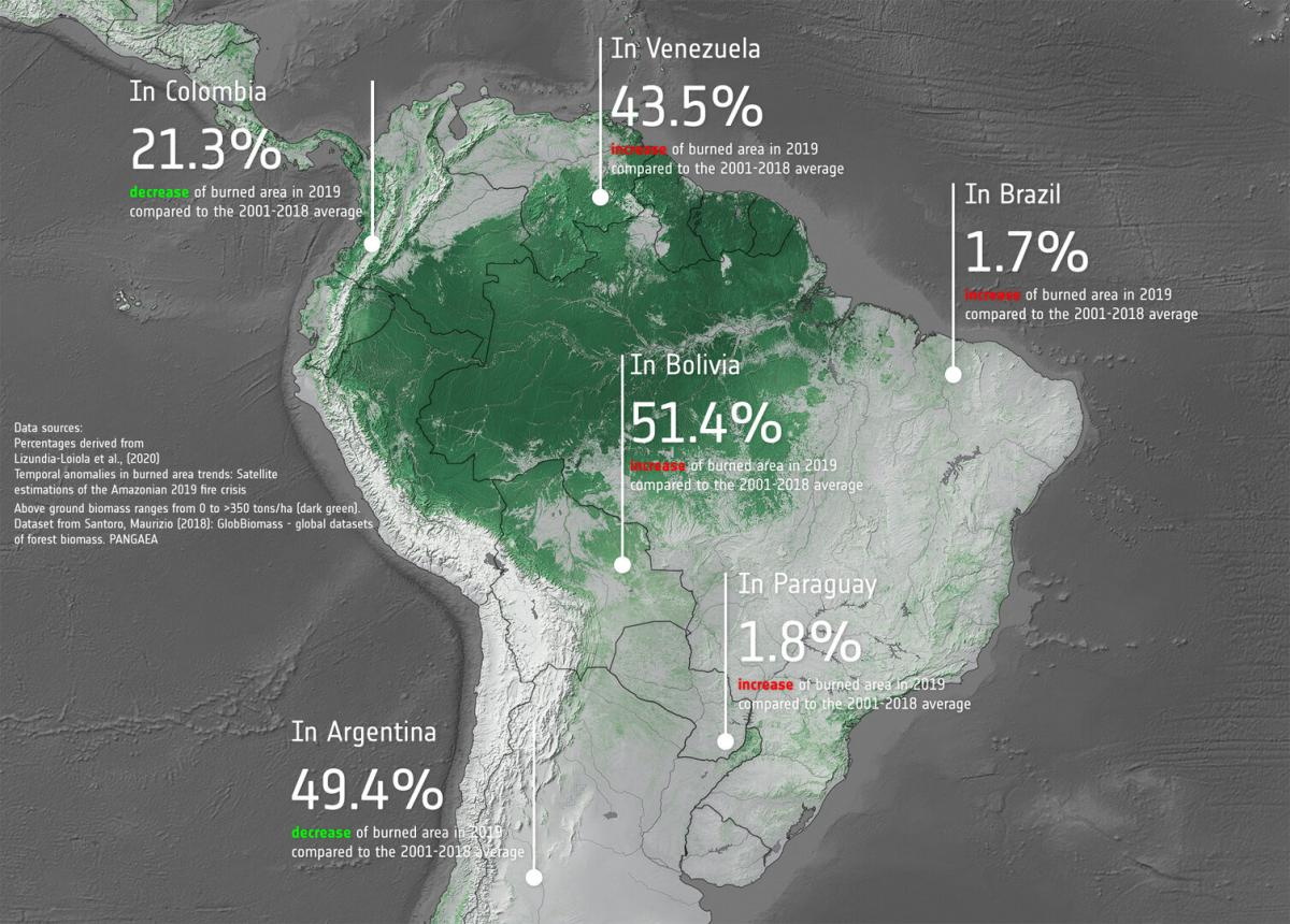 Total burned area in the Amazon - 2019 compared to the 2001-2018 average